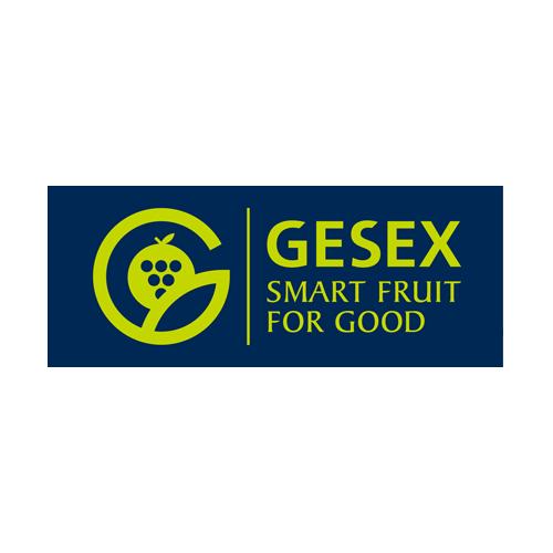 Gesex